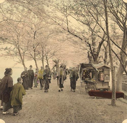 Hand-colored photo of cherry-blossom viewing at Mukojima (Takashima, 1897)